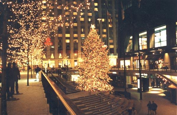 Christmas Tree Downtown Chicago.Hancock Center Christmas Tree