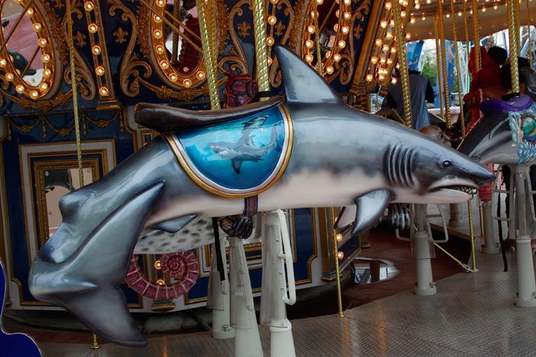 Aquarium Carousel Shark