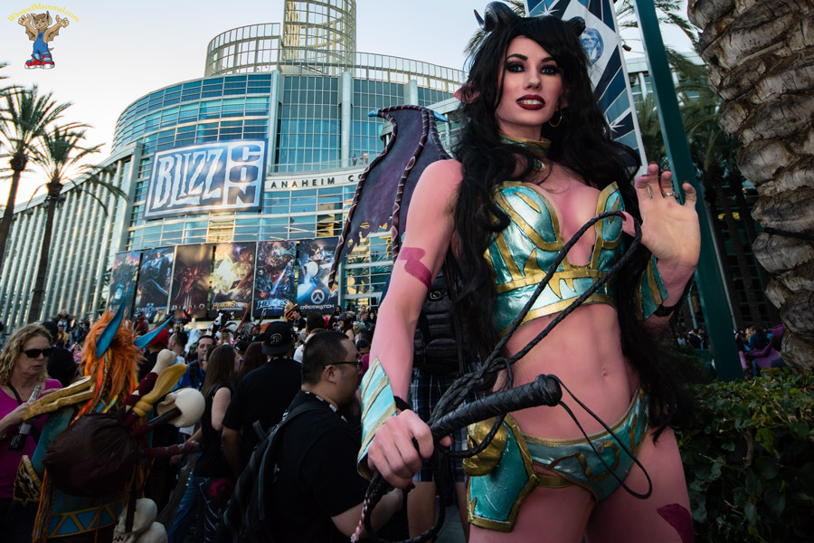 Succubus Cosplay At BlizzCon 2015
