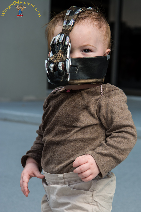 & Baby Bane cosplay photo taken at Dragon Con 2013 by Batty!
